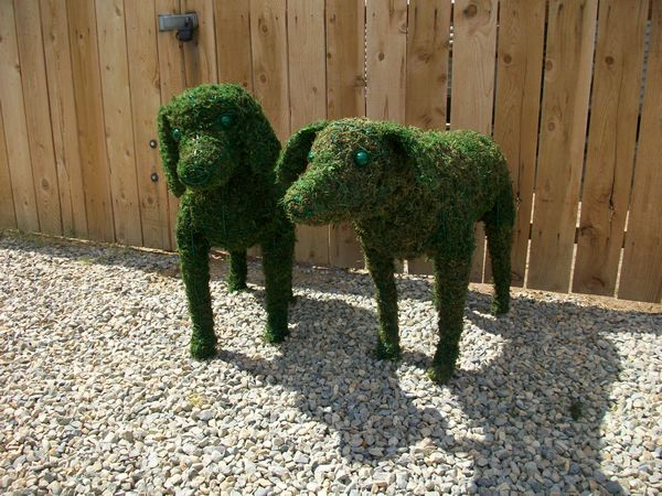 Custom Pair of Dog Topiaries in Moss Frames from Wire(