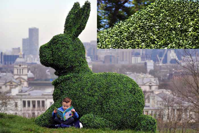 We make custom topiaries - Easter Bunny Hero topiary in artificial boxwood