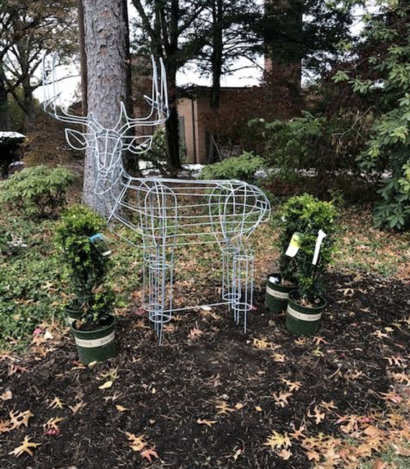 Own a Deer in your garden without having to keep him in the wild