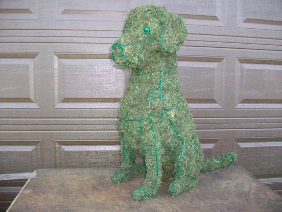 Portuguese water dog moss topiary