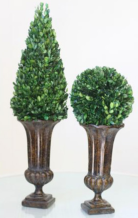 care for preserved live topiaries