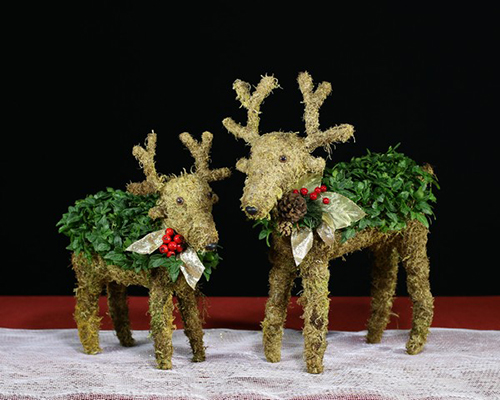 Reindeer Topariy for the Holiday Season
