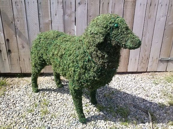 custom made Sheep Moss Topiary Standing