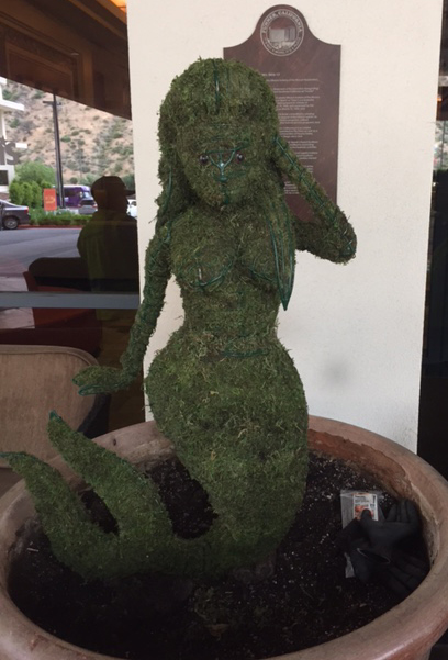 Mermaid moss topiary