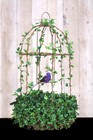 Live Topiary Birdcages, Live Topiary Plants