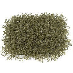 12 inch   x 12 inch   Plastic Wild Weed Grass Mat