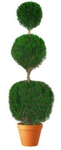 Preserved Triple Ball Topiary 30""