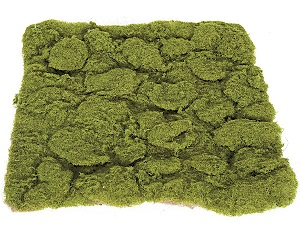14 inch   Lumpy Moss Mat (Green with Brown Back)