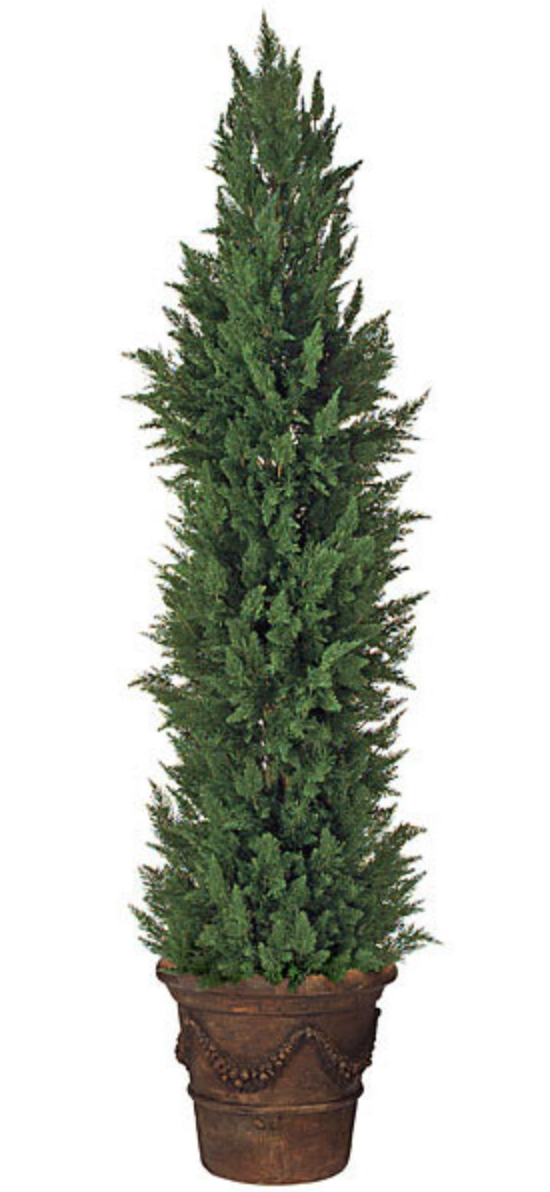 12 Foot  Outdoor Cypress Tree with AV Protection