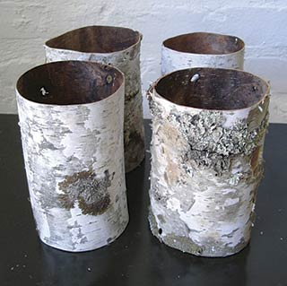 One Case of Birch Tubes