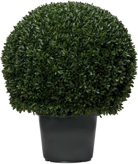 Artificial Topiary Trees, Ball Topiary, 20 inch Mini Tea Leaf Topiary