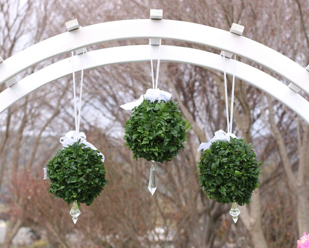 2 and 5 LB Hanging Ball Ivy Topiary
