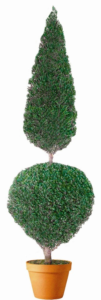 Preserved Ball Cone Topiary 40""