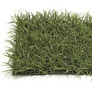 "10"" Oriental Grass Mat (Green)"
