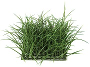 "10"" Plastic Wild Grass Mat (Dark Green)"