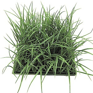 "10"" Plastic Wild Grass Mat (Tutone Green)"