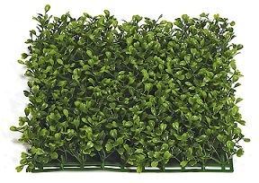 Boxwood Mat 10 inch   Square