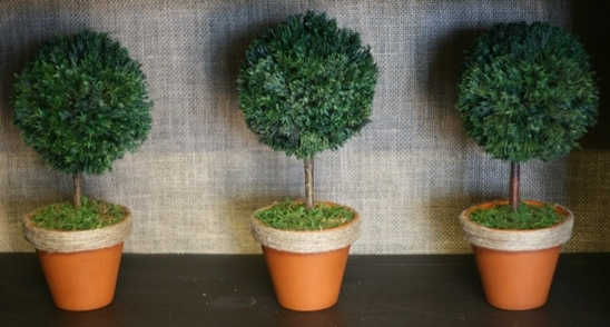11 inch   Mini Single Ball (Set of Three) in Boxwood Foliage