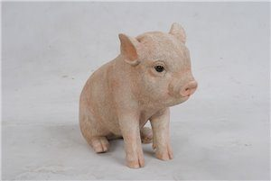 Sitting Baby Pig, 7 and 5 Inch x 3 and 5 Inch x 6 Inch