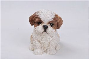 Pet Pals Sitting Shih TZU Puppy Brown, 7 and 25 Inch x 5 and 25 Inch x 6 and 5 Inch