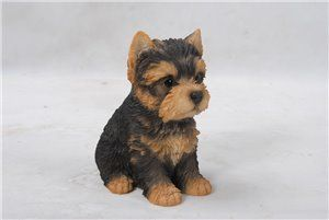Pet Pals Sitting Yorkshire Terrier Puppy, 6 Inch x 4 and 25 Inch x 6 and 5 Inch