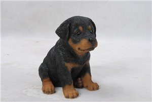 Pet Pals Sitting Rottweiler Puppy, 6 and 5 Inch x 4 and 75 Inch x 6 and 5 Inch