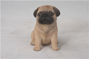 Pet Pals Sitting Pug Puppy,  6 Inch x 4 and 5 Inch x 6 and 5 Inch