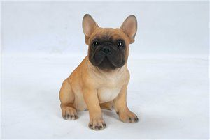 Pets Pals Sitting French Bulldog Puppy, 7 Inch x 5 Inch x 7 and 75 Inch