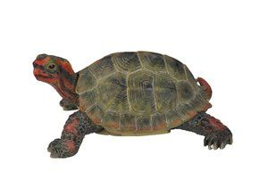 Small Japanese Land Turtle, 7 Inch x 5 and 5 Inch x 3 and 5 Inch