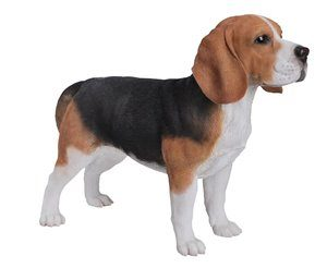 Dog Beagle Standing, 22 Inch x 8 Inch x 15 and 5 Inch