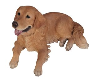 Dog Golden Retriever Lying Down, 25 Inch x 15 and 5 Inch x 14 Inch
