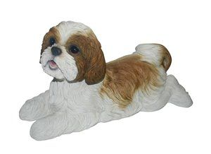 Dog Shih TZU Lying Down, 14 and 5 Inch x 6 and 5 Inch x 7 and 5 Inch