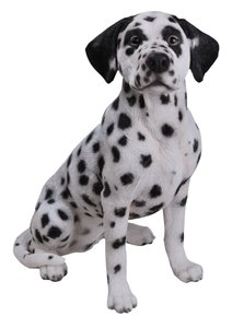 Dog Dalmation Sitting, 18 Inch x 10 and 5 Inch x 20 and 5 Inch
