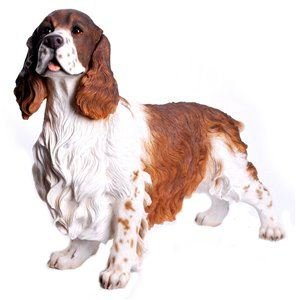 Dog Springer Spaniel Standing, 22 and 5 Inch x 8 Inch x 18 Inch