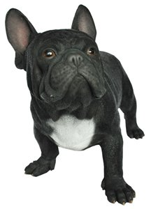Dog French Bull Dog, 20 Inch x 10 Inch x 14 Inch