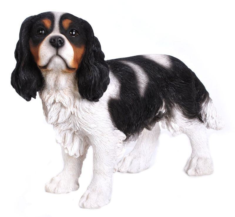 Dog King Charles Spaniel, 16 and 5 Inch x 6 Inch x 12 and 5 Inch