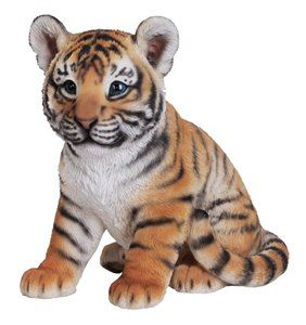 Tiger Baby Sitting, 9 and 5 Inch x 6 and 5 Inch x 9 and 5 Inch
