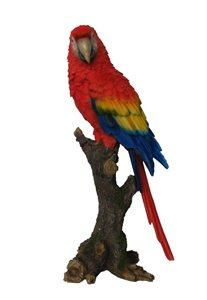 Parrot On Branch, 7 Inch x 5 Inch x 15 Inch