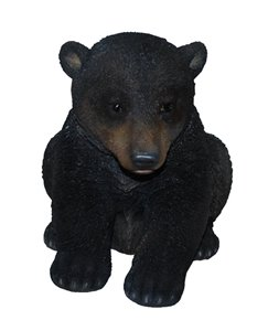 Black Bear Cub Sitting, 15 and 6 Inch x 11 Inch x 12 and 5 Inch