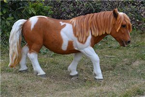 Shetland Pony Brown and White, 32 and 5 Inch x 8 and 6 Inch x 19 and 5 Inch