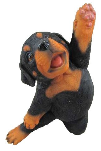 Dog Yoga Rottweiler Puppy W and One Arm Up, 6 and 5 Inch x 4 Inch x 8 and 75 Inch