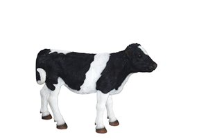 Cow Standing, 42 inch   x 13 and 5 inch   x 30 inch
