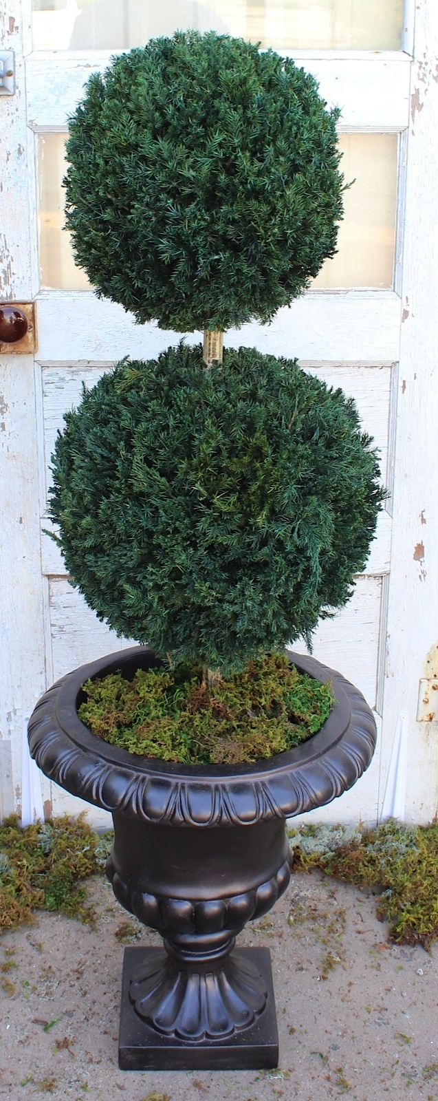 Double Ball Topiary 40 inch