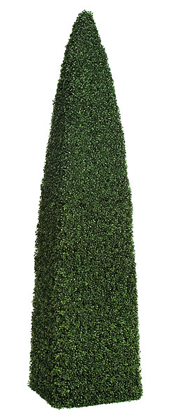 8 Foot Boxwood Cone Obelisk Topiary