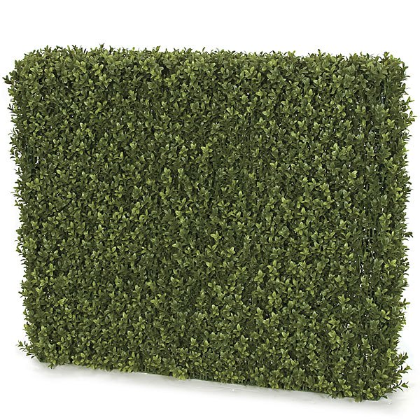 32 Inch x 37 Inch x 8 Inch Boxwood Hedge Limited UV Protection