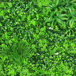 Latest Artificial Greenery Wall Panels B031