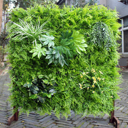 Artificial Vertical Garden L002