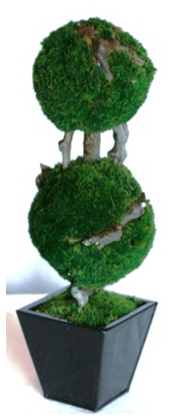 19 inch   Double Moss Topiary