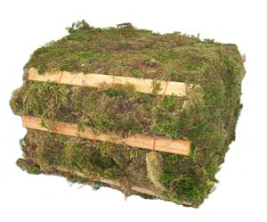 Natural Moss Green Bale, 28 Pounds