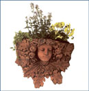 OM10, Shop for Large Terracotta Pedestal | TopiaryTree and NET
